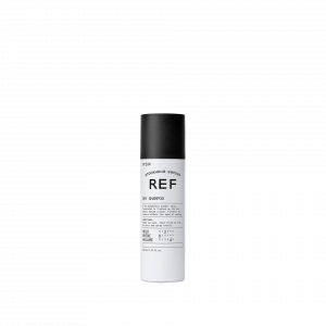 Dry Shampoo 204